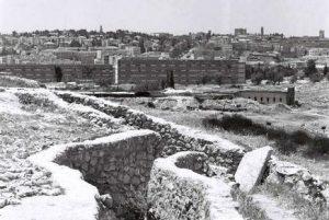 Tahmoshet-Wiki
