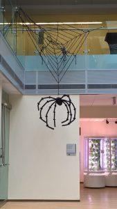 spiderim